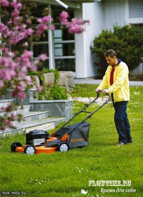 кусторез, инструмент, для сада, огорода, дачи, газонокосилка, инвентарь, техника, как выбрать, сравнить, отзывы