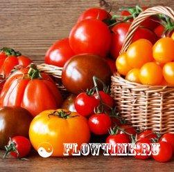Сделать парник для помидоров